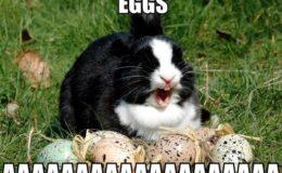 Os Ovos de Páscoa Mais Legais de 2013