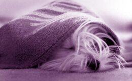 4 motivos pra não desistir dos exercícios no frio