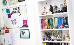 Tour pela estante de livros e miniaturas