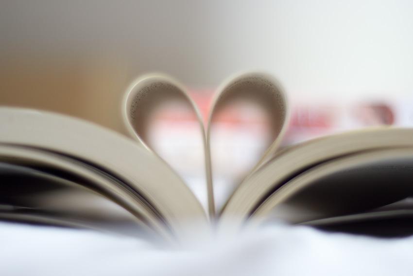5-livros-para-ler-em-um-dia (8)