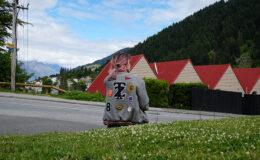 Intercâmbio Nova Zelândia: custo, passaporte e mais