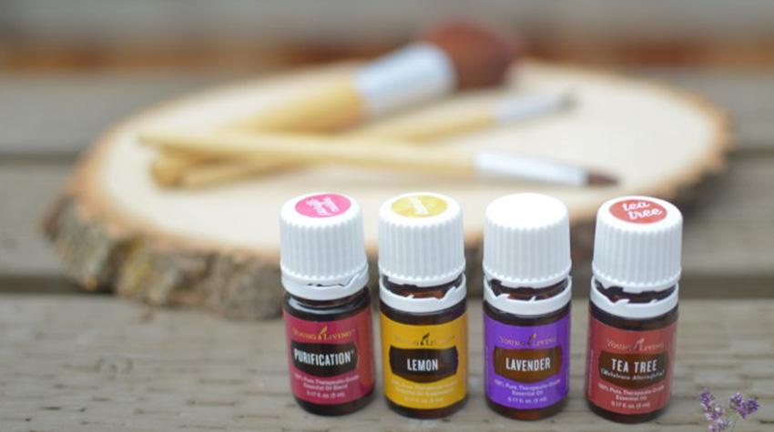 ingredientes-naturais-makeup-brushes