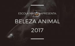 #MADRE AJUDA – 3º Edição do Beleza Animal na Escola…