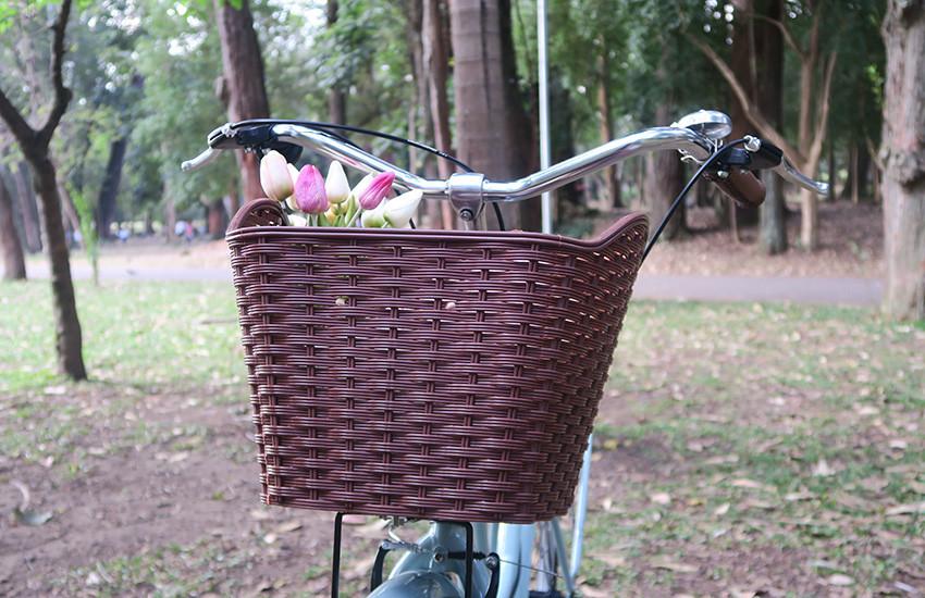 bicicleta-retro-feminina-gama-bikes-03
